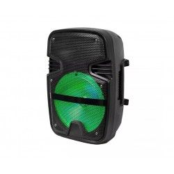 Diverse Partyhögtaler - 15W, uppladdningsbart, Bluetooth, RGB, inkl. mikrofon
