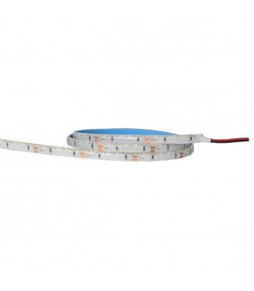LEDlife 11W/m sidoljus LED strip - 5m, IP65, 24V, 120 LED per. meter