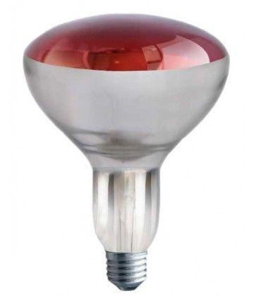 Röd E27 250W infraröd glödlampa - Röd varmalampa , R125