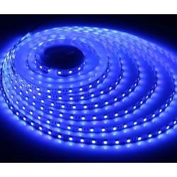 LED strip Blå 450 nm 4,8W/m LED strip - 5m, IP20, 60 LED per. meter