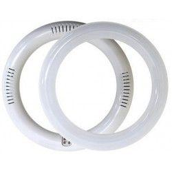 2D kompakt Rör 11W LED cirkelrör - Ø25 cm, 230V