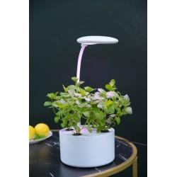 Hydroponic LEDlife hydroponisk miniköksträdgård - vit, inkl. växtljus, 6 platser, inbyggd timer och pump, 1,8L vattentank