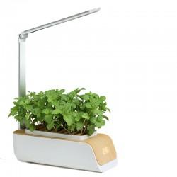 Hydroponic LEDlife hydroponisk mini örtträdgård - vit, inkl. växtljus, 9 rader, timer, 0,8L vattentank