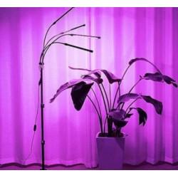 LED växtbelysning LEDlife växtljus med stativ - Svart, 4 lampor, justerbar höjd, flexibel arm
