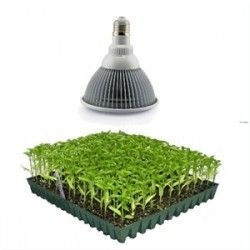 LED växtbelysning LED 12W växtarmatur, E27, Grow lamp