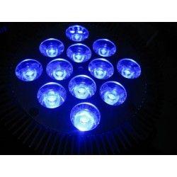 LED växtbelysning LED växtlys, 12W, E27, Ren blå, Grow lamp