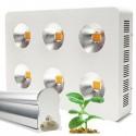 LED växtbelysning